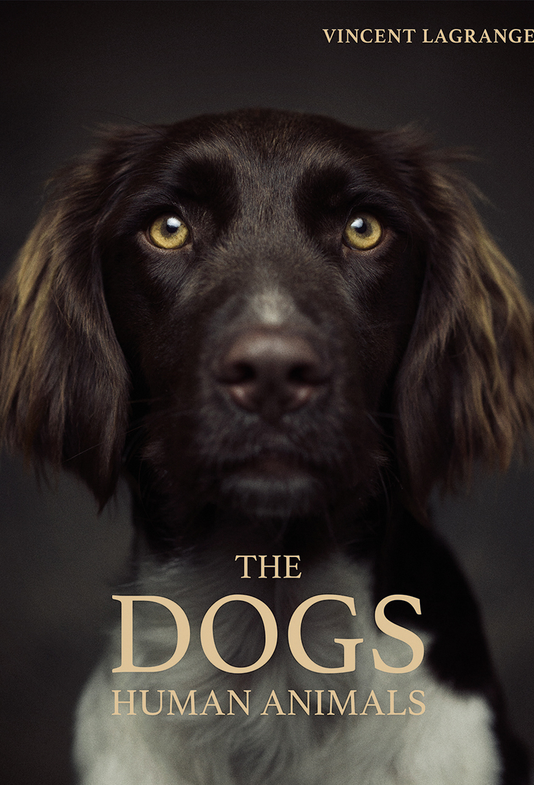 The Dogs Human Animals - First book of dog photography by Vincent Lagrange, presenting canine portraits full of tenderness and personality