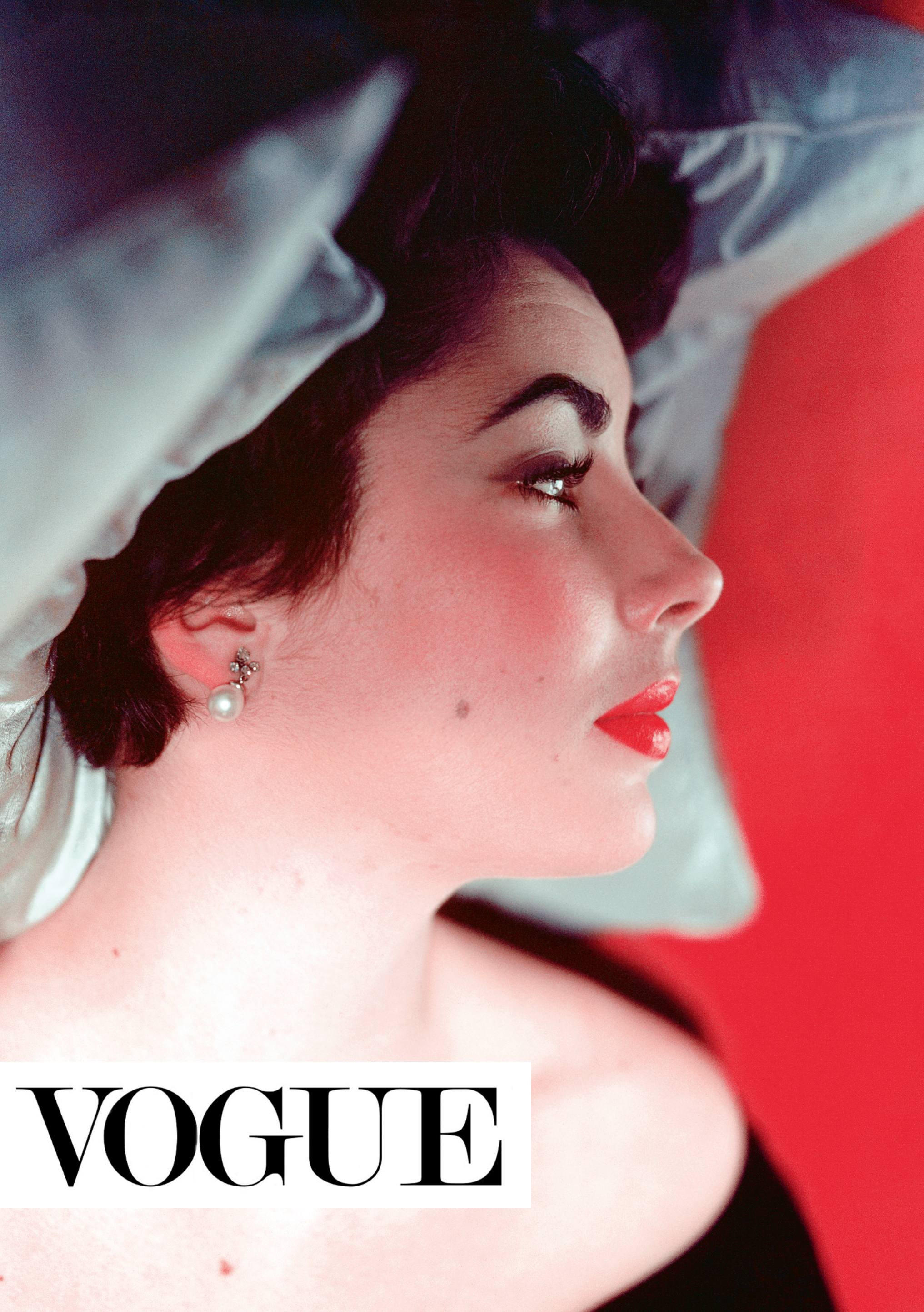 ACC Art Books and Iconic Images proudly present the work of eight wonderful photographers - Douglas Kirkland, Milton Greene, Gered Mankowitz, Norman Parkinson, Eva Sereny, Terry O'Neill, Greg Brennan and Gary Bernstein - who were fortunate enough to capture Elizabeth Taylor at different moments of her life.