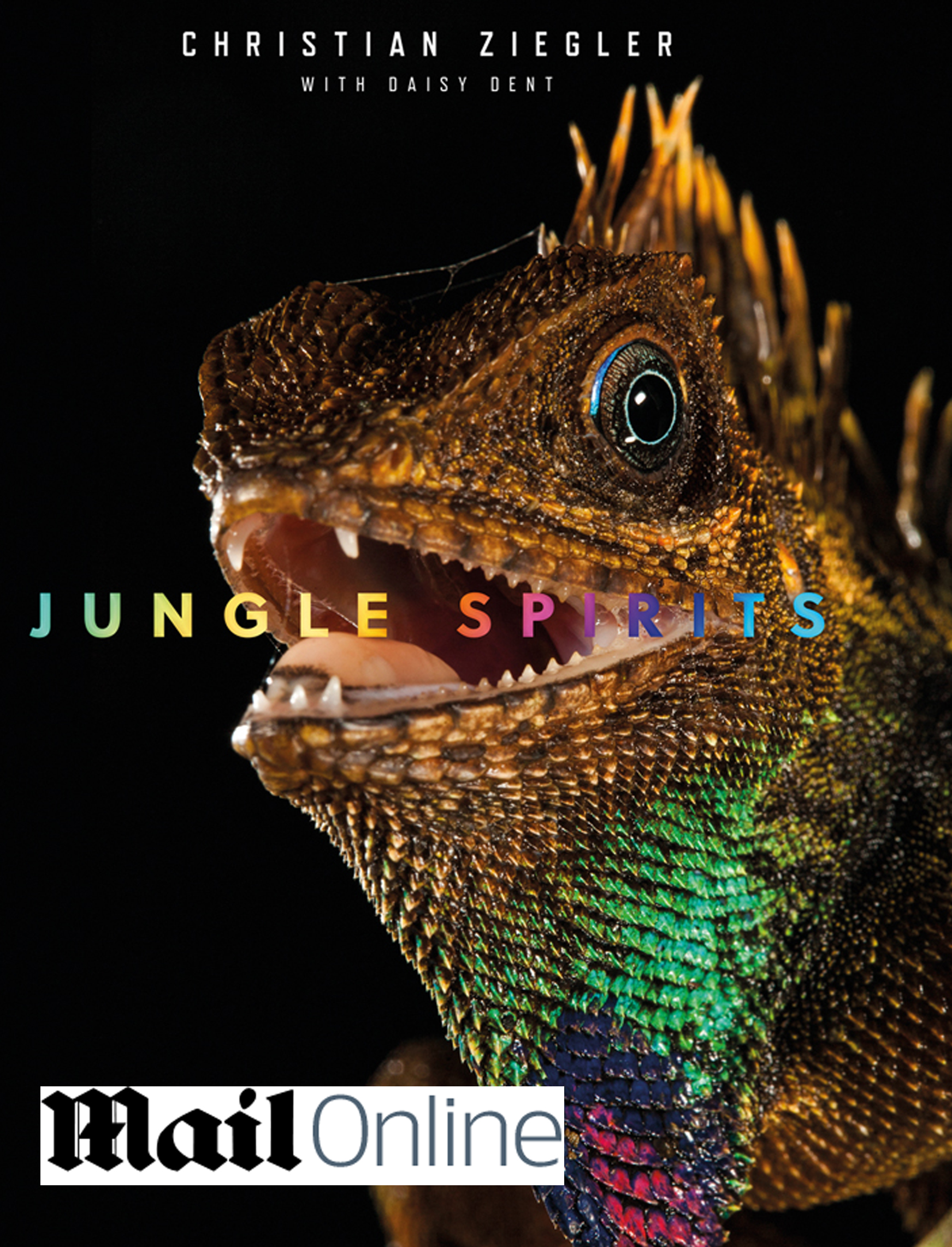 Jungle Spirits is a comprehensive look at the world's most diverse tropical rain forests by teNeues. Text in English, German and French.