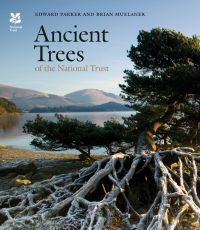 Ancient Trees of the National Trust
