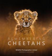 Remembering Cheetahs