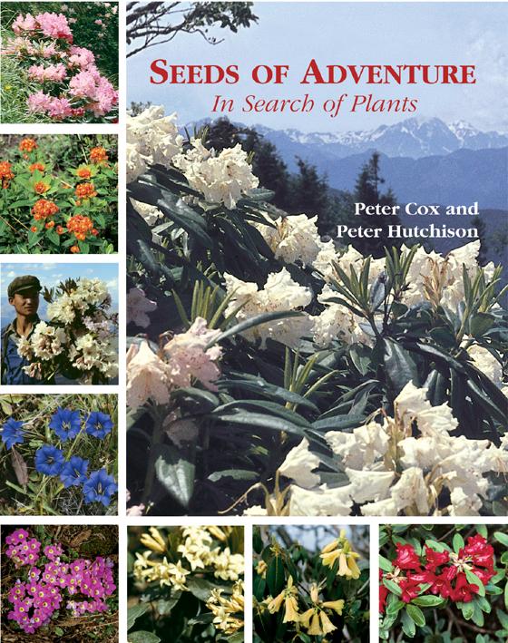 Seeds of Adventure