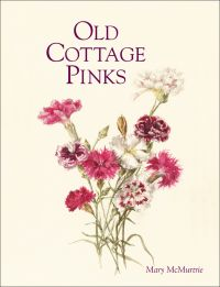 Old Cottage Pinks
