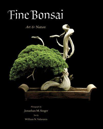 Fine Bonsai - Deluxe Edition