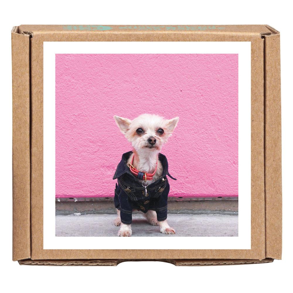 Ella Bean the Dog GreenGift-Notes