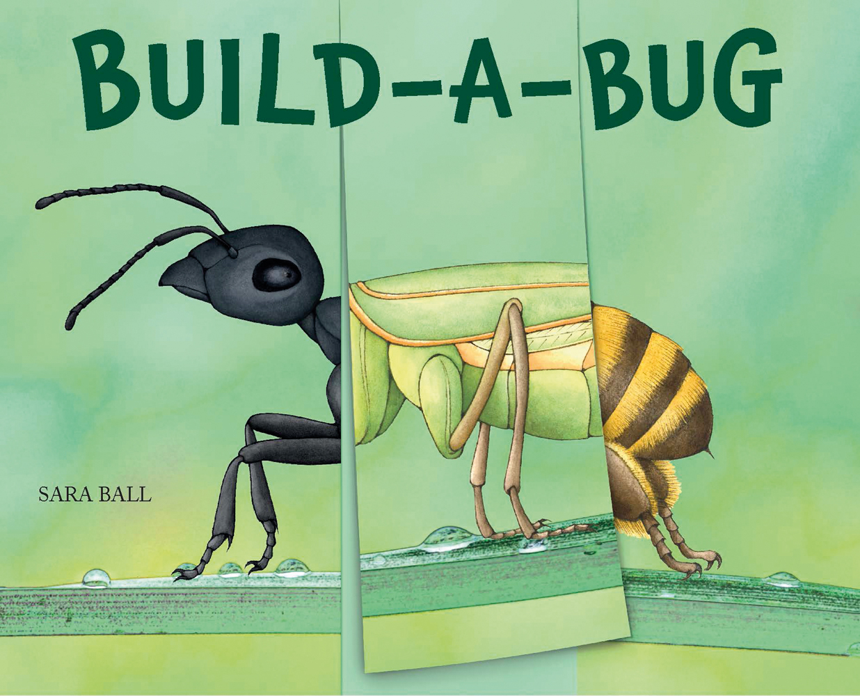 Build-a-Bug