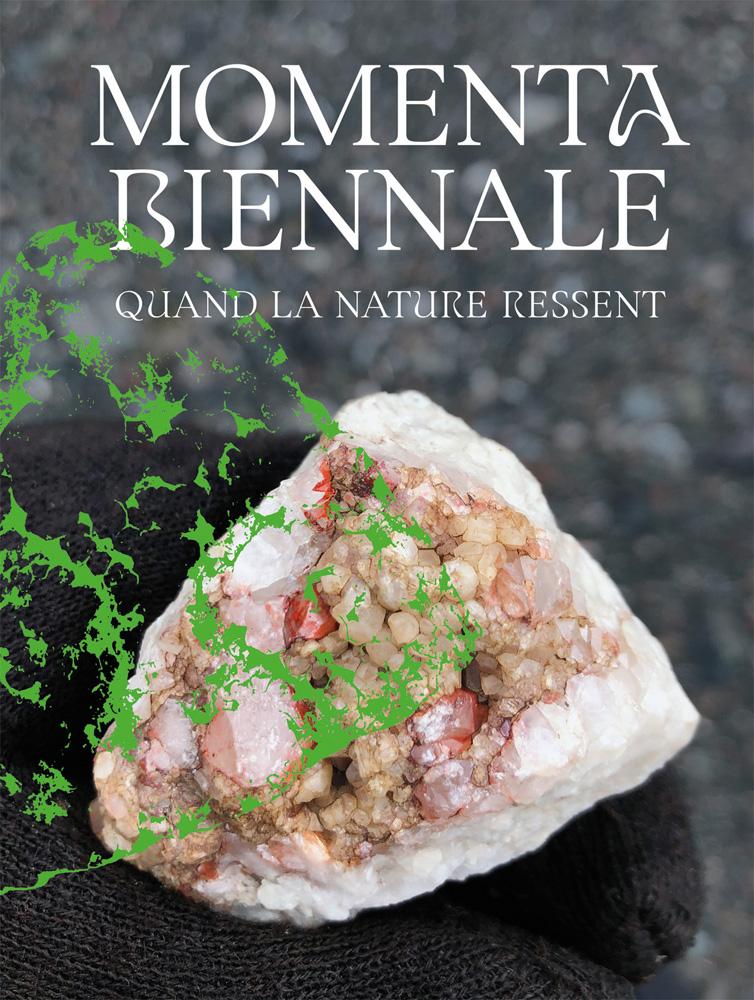 MOMENTA Biennale de l'image