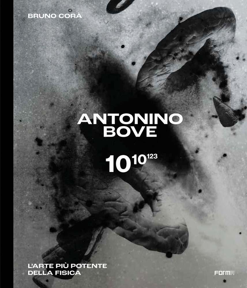 Antonino Bove 1010123