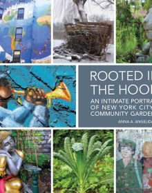 Rooted in the Hood